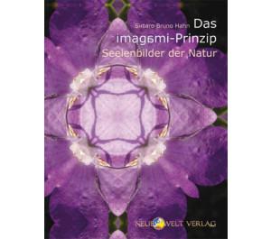 Das imagami-Prinzip