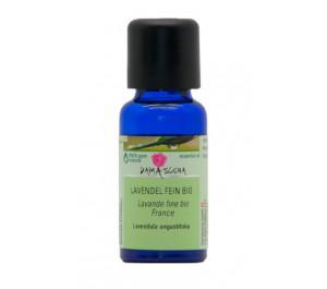 Lavendel fein-Öl Bio 20 ml