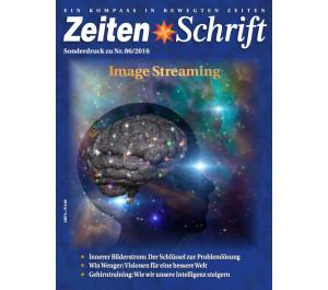 Sonderdruck 'Gehirn' (ZeitenSchrift Nr. 86)
