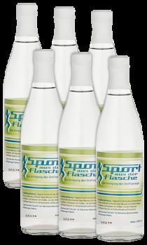 Sport aus der Flasche-Kurset (6 x 500 ml)