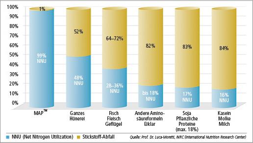 aminosäuren nahrungsergänzung