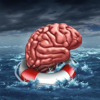 Warum erkranken immer mehr Menschen an Alzheimer? Und was kann man dagegen tun?